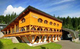 Hotel Lesana